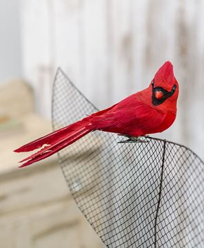 Picture of Large Flocked Feather Cardinal