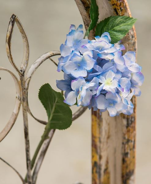 Picture of Hydrangea Pick - Blue