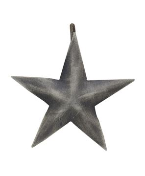 Picture of Star Shower Curtain Hook