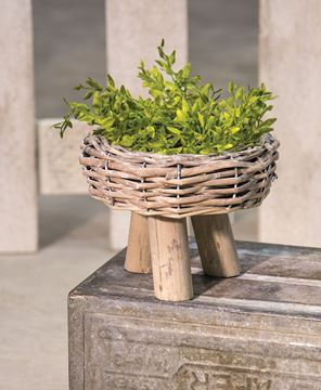 Willow Basket Planter, Medium