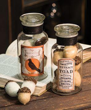 Witch's Brew Toad Jar
