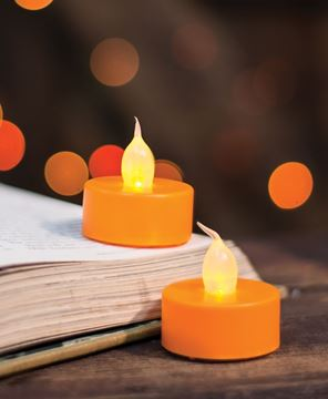 Orange Tealights