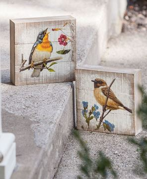 Songbird Box Signs