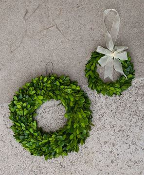 "Boxwood Wreath, 11"""