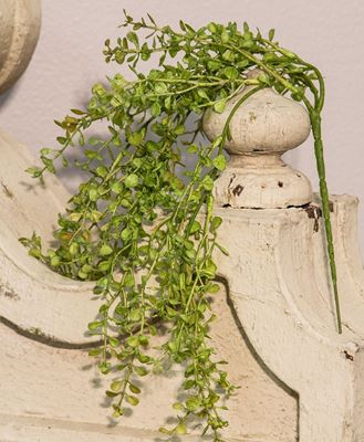 """Picture of 19"""" Hanging Baby's Grass Bush"""