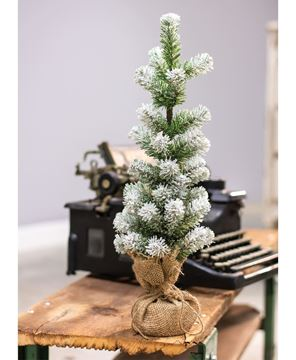 """Picture of Snow Tipped Pine Tree, 18"""""""