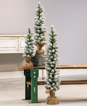 """Picture of Snow Tipped Pine Tree, 24"""""""