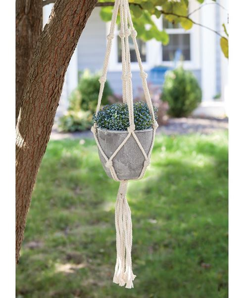 Picture of Macrame Hanger with Cement Pot