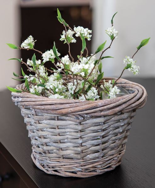 Picture of Gray Split Willow Basket