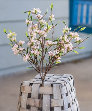 """Picture of Bliss Buds Bush, Light Pink, 14"""""""