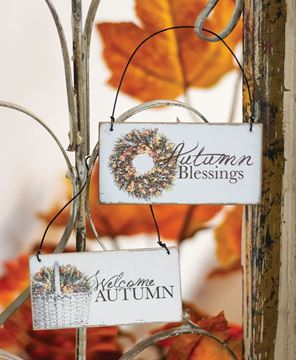 Picture of Autumn Blessings Ornament, 2 Asstd.