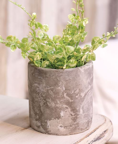 Picture of Large Cement Pot