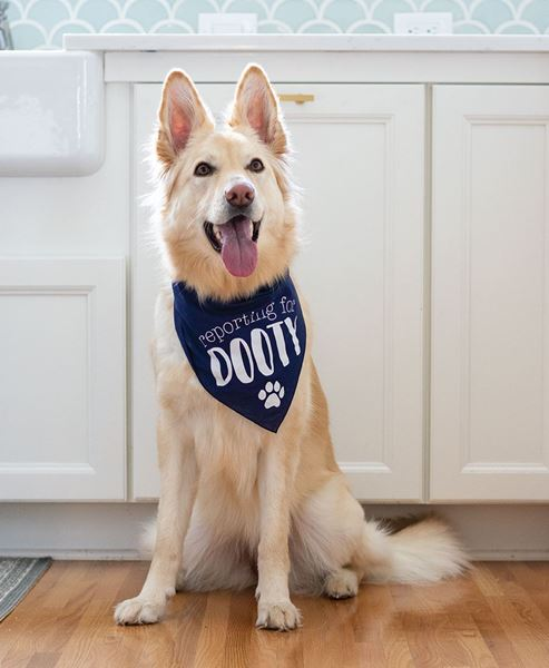 Picture of Reporting for Dooty Doggie Bandana