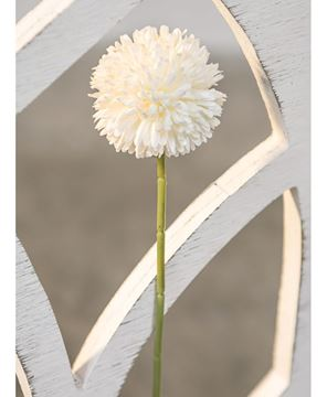 Picture of Pompom Stem, White