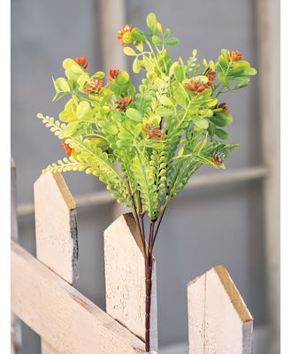Picture of Succulent Bush, Coral Buds