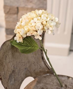 Picture of Antique Ivory Hydrangea Pick