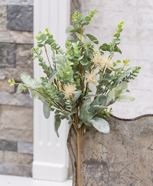 Picture of Aberdeen Sea Holly Bush, 20""