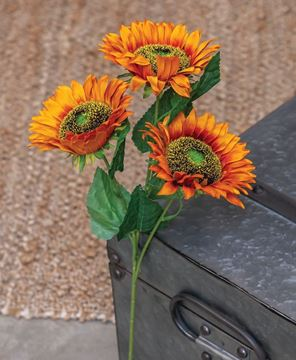 Picture of Burnt Orange Sunflower Spray