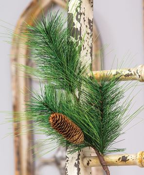 Picture of Pine Spray with Pinecone