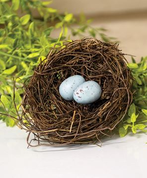 "Picture of Angelvine Birdnest With Eggs, 4.5"""