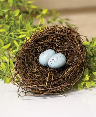 Picture of Angelvine Birdnest With Eggs, 4.5""