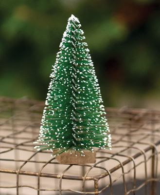 """Picture of Snowy Bottle Brush Tree, 4"""""""