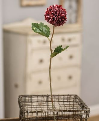 "Picture of Pompom Flower Stem, 14"", Red"