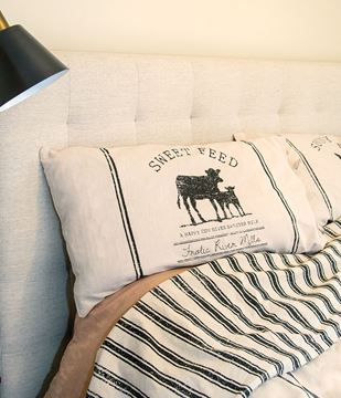 Picture of Sweet Feed Farmhouse Stripe Queen Pillow Sham