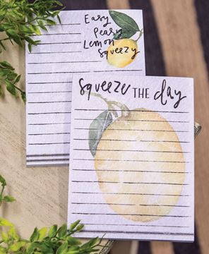 Picture of Squeeze the Day Mini Notepad