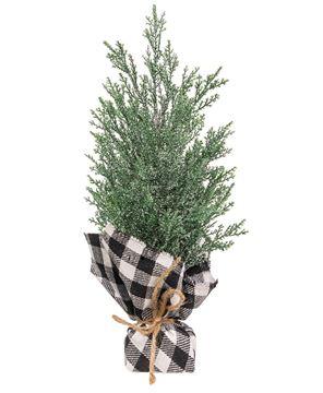 Picture of Mini Cedar Tree w/Black & White Buffalo Check Base