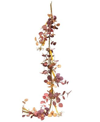 Picture of Autumn Silver Dollar Garland, 5ft
