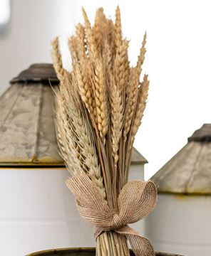"""Picture of Natural Wheat Bundle, 14"""""""