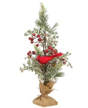 Picture of Mountain Berry Pine Tree with Cardinal
