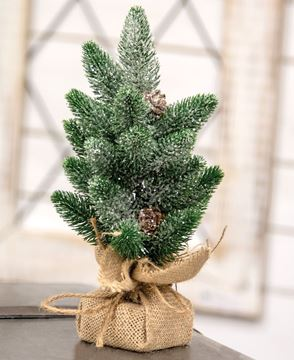Picture of Sparkle Star Pine Mini Tree with Cones