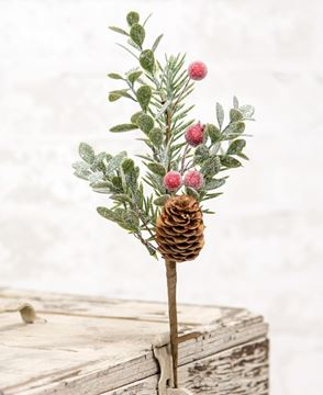 """Picture of Sugar Berry Pine Pick, 11"""""""