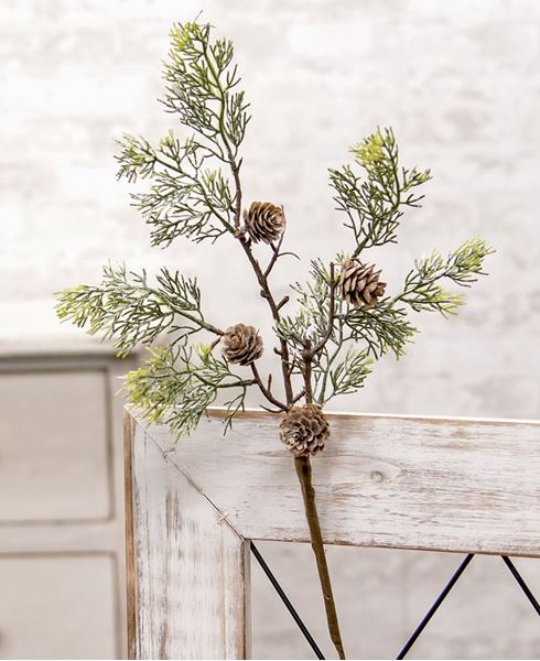 "Picture of Weeping Pine Cedar Pick, 18"""