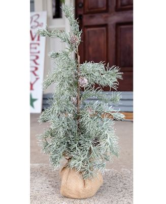 """Picture of Weeping Pine Tree with Burlap Base, 22"""""""