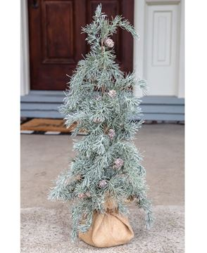 """Picture of Weeping Pine Tree with Burlap Base, 30"""""""