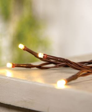 Picture of LED Battery Timer Lights, Brown Cord, 35 Lights