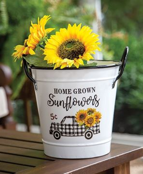Picture of Home Grown Sunflowers White Metal Bucket