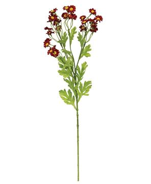 Picture of Chamomile Flower Spray, Red