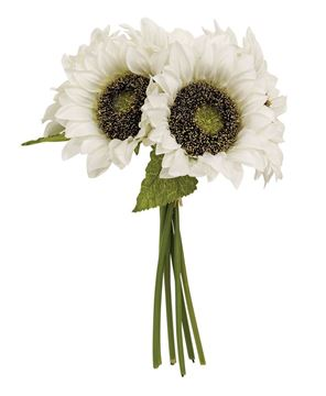 Picture of White Sunflowers Bouquet