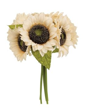 Picture of Champagne Sunflowers Bouquet