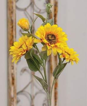Picture of Sunflower Blooms Spray, Yellow