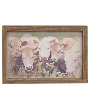Picture of Gathered Cows Framed Print, Wood Frame